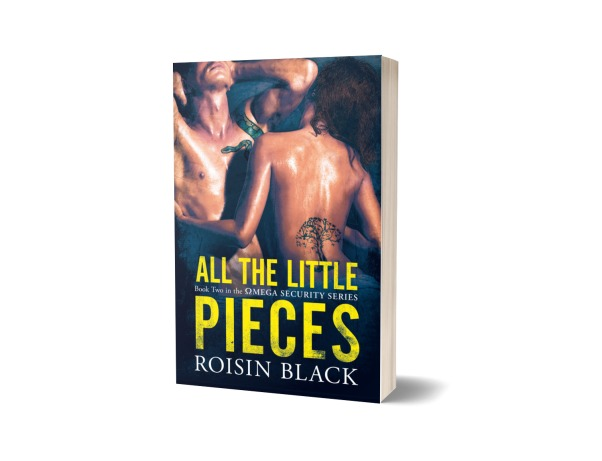 all the little pieces paperback mock-up
